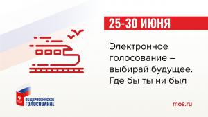 Электронное голосование по поправкам в Конституцию РФ будет доступно для жителей Москвы и Нижегородской области